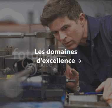 domaines d'excellence